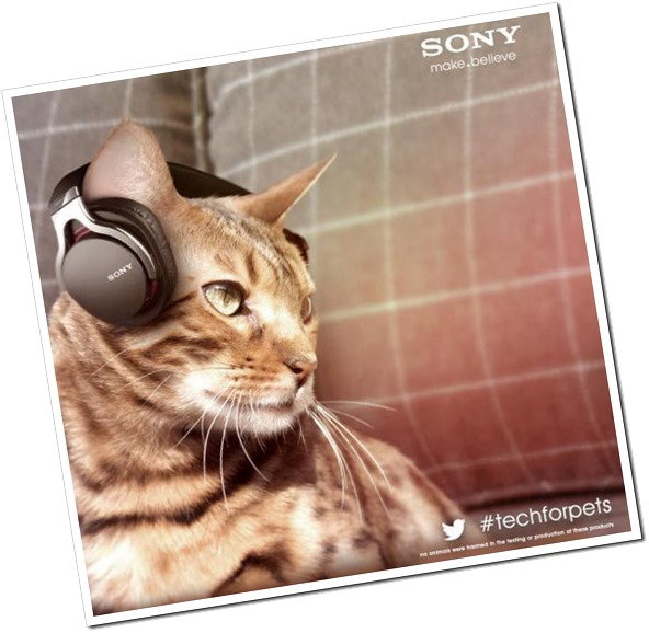 sony-pet-tech